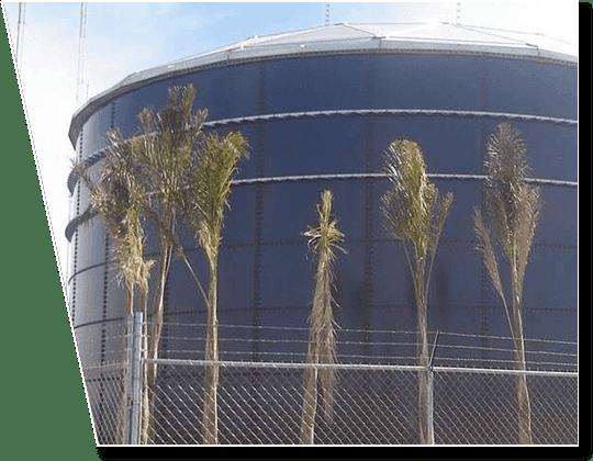 biofuels-main
