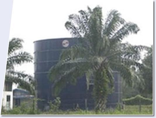 indonesia biofuel study